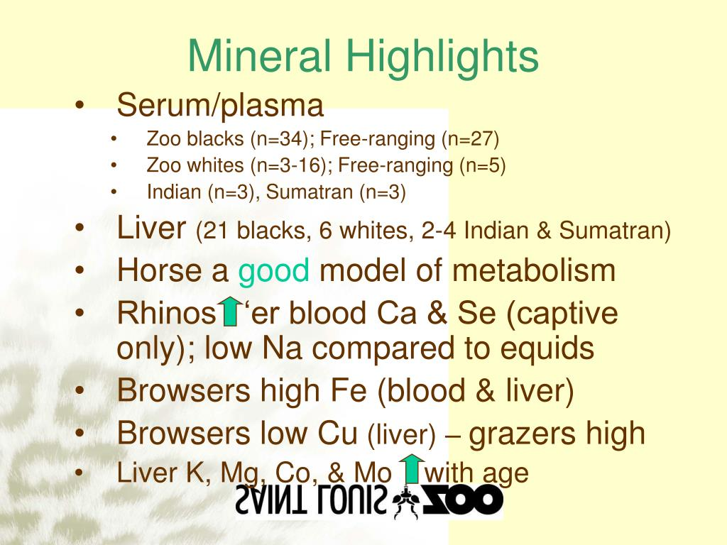 Mineral Highlights