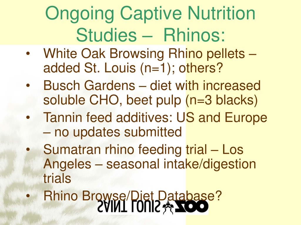Ongoing Captive Nutrition Studies –  Rhinos: