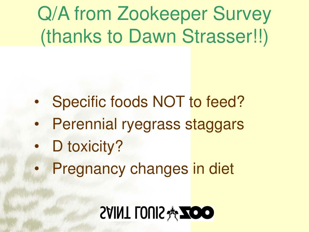 Q/A from Zookeeper Survey (thanks to Dawn Strasser!!)
