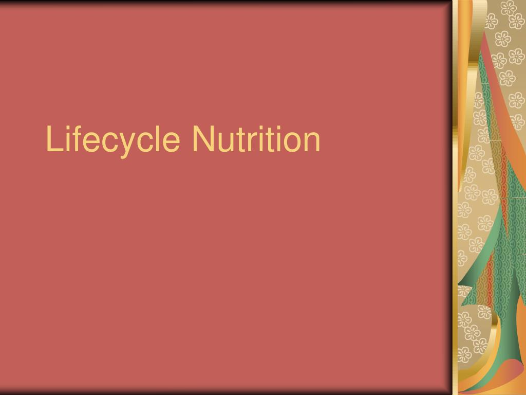 lifecycle nutrition l.