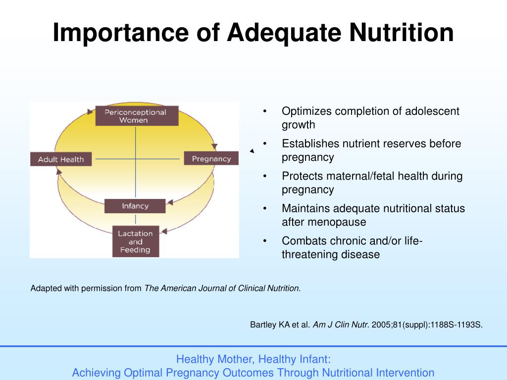 Importance of Adequate Nutrition