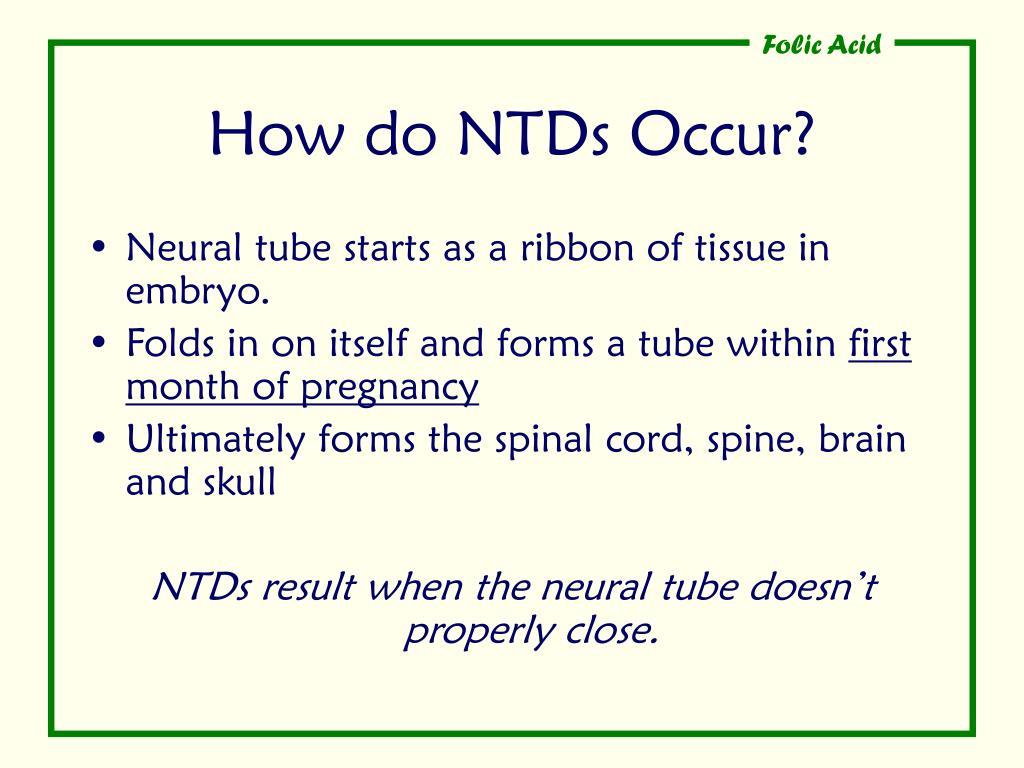 How do NTDs Occur?