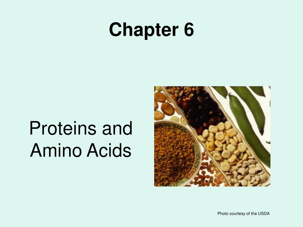 proteins and amino acids l.