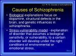 causes of schizophrenia32