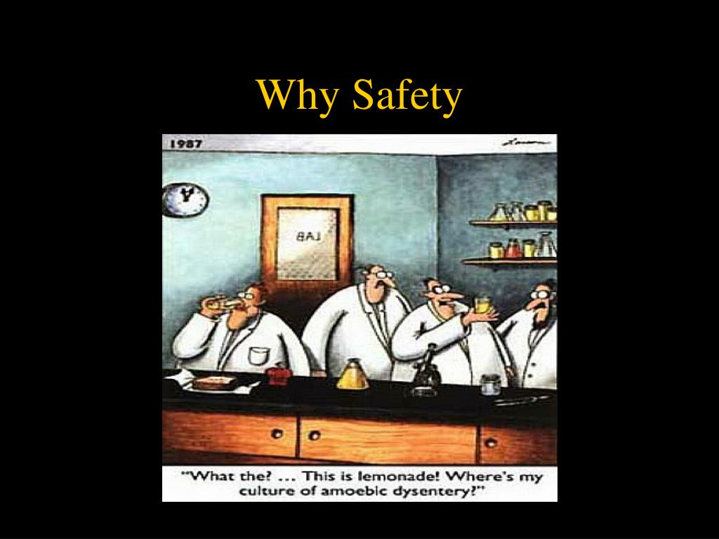 Why Safety