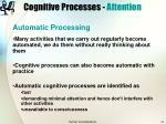 cognitive processes attention17