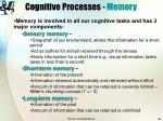 cognitive processes memory29