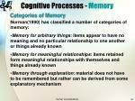 cognitive processes memory32