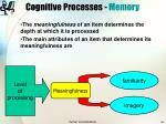 cognitive processes memory34