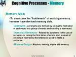 cognitive processes memory39