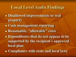 local level audit findings12