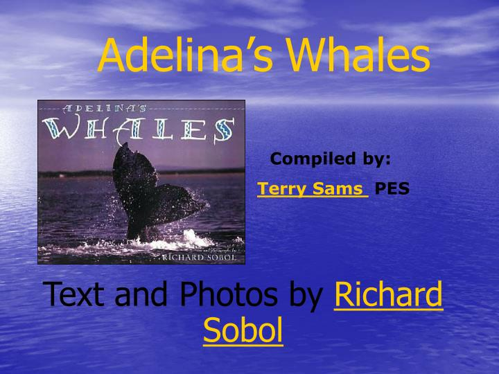 adelina s whales n.