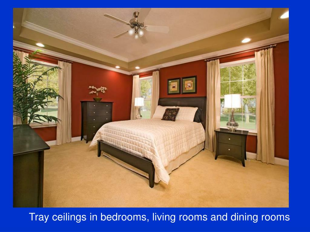 Tray ceilings in bedrooms, living rooms and dining rooms