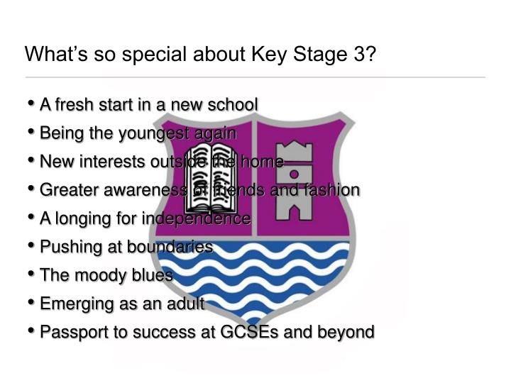 What s so special about key stage 3
