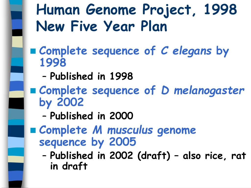 Ppt - Human Genome Project Powerpoint Presentation