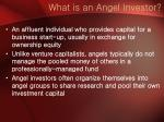 what is an angel investor