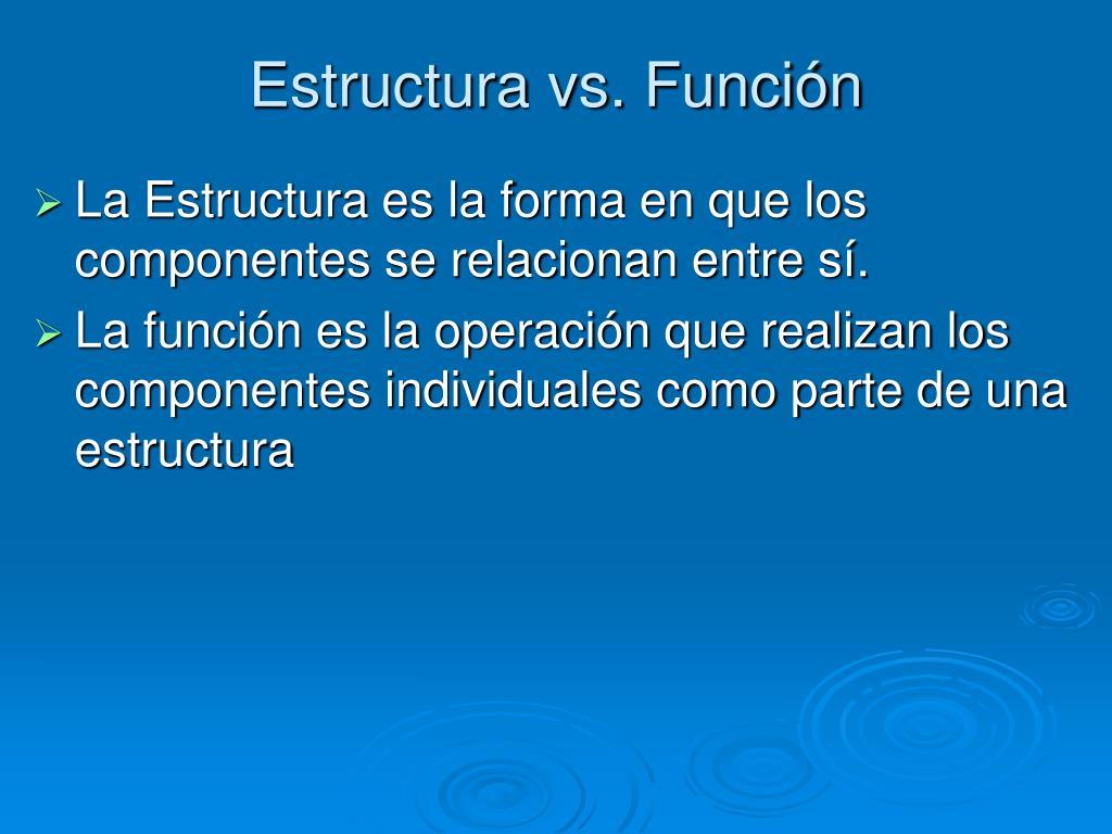 Estructura vs. Función