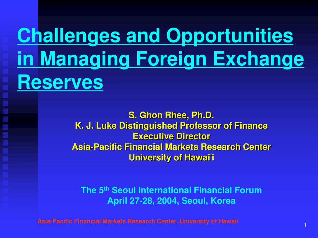 challenges and opportunities in managing foreign exchange reserves l.