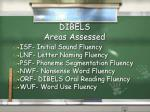 dibels areas assessed