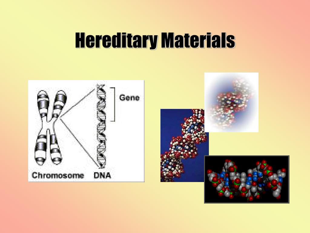 Hereditary Materials