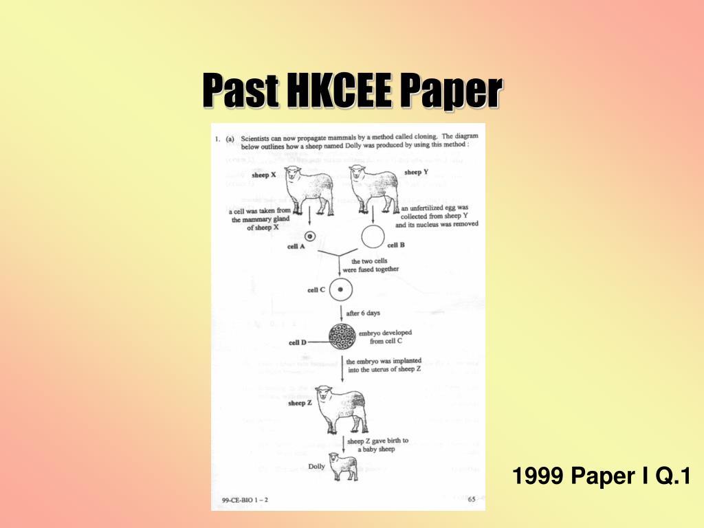 Past HKCEE Paper