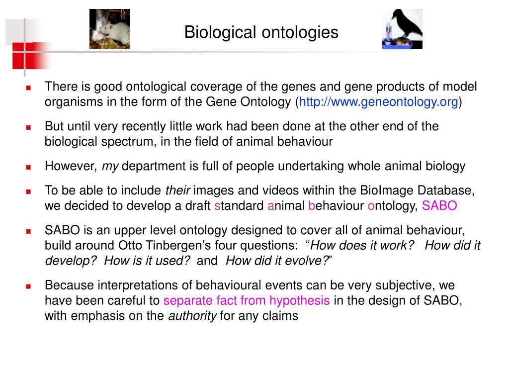 Biological ontologies