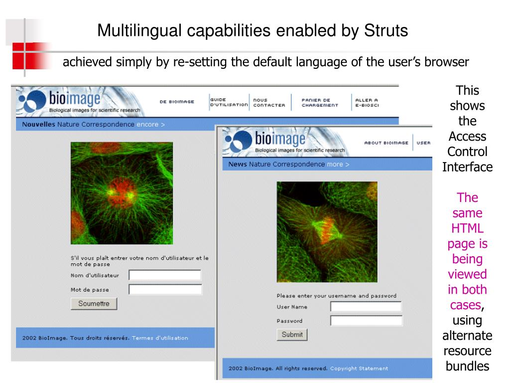 Multilingual capabilities enabled by Struts