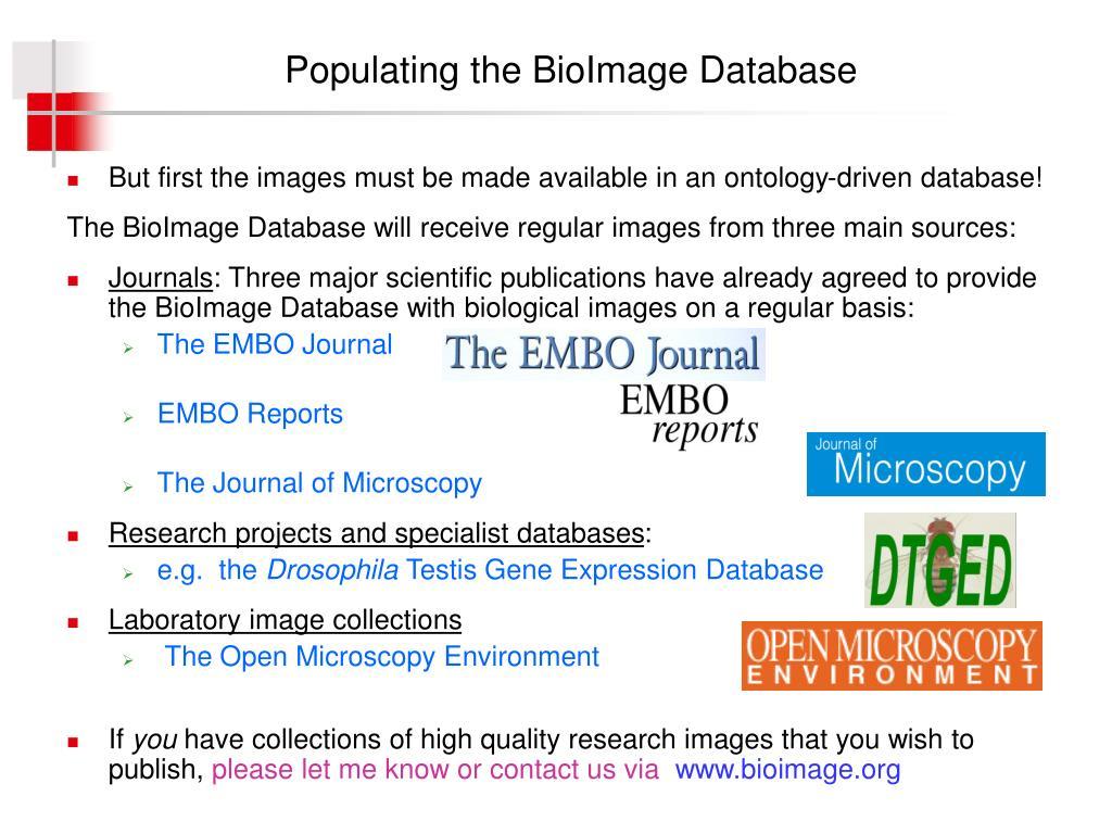 Populating the BioImage Database