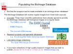 populating the bioimage database