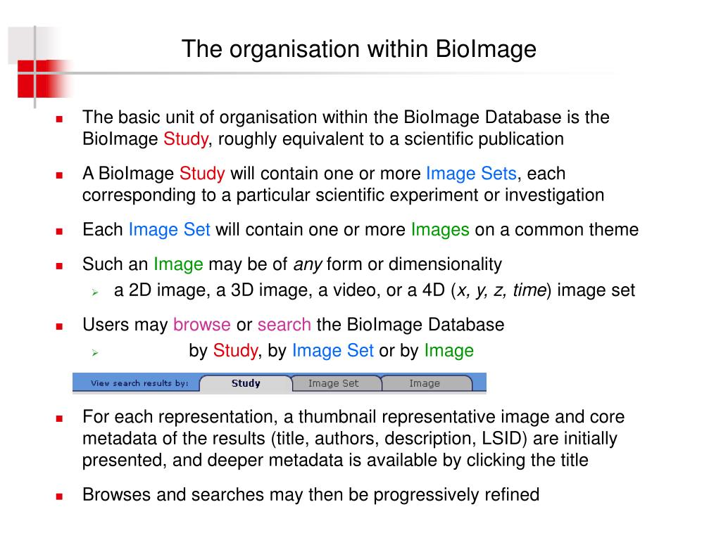 The organisation within BioImage