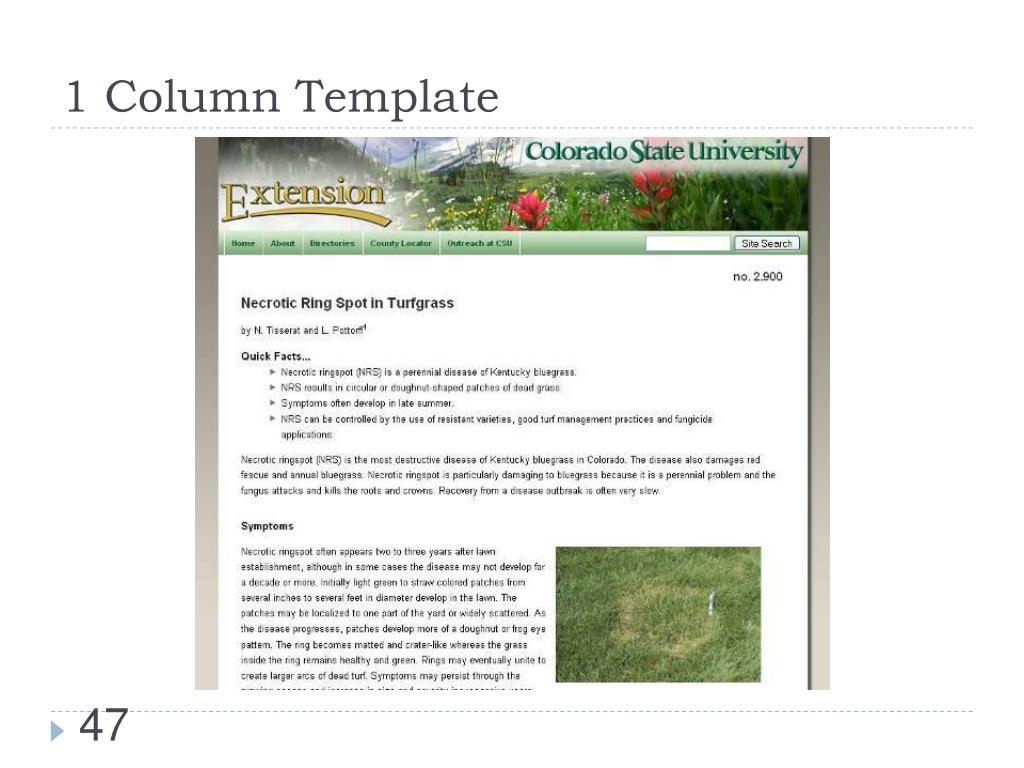 1 Column Template