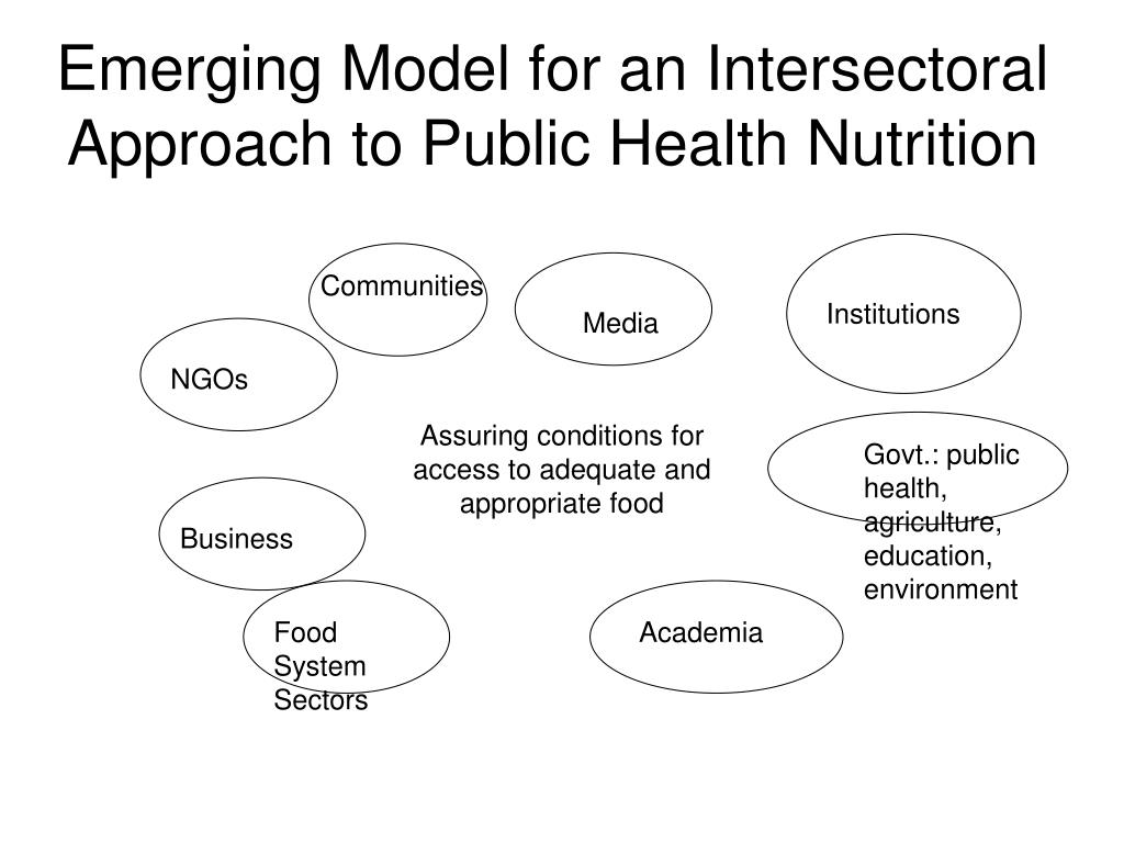 Emerging Model for an Intersectoral Approach to Public Health Nutrition