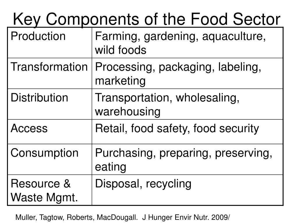 Key Components of the Food Sector