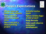 project expectations