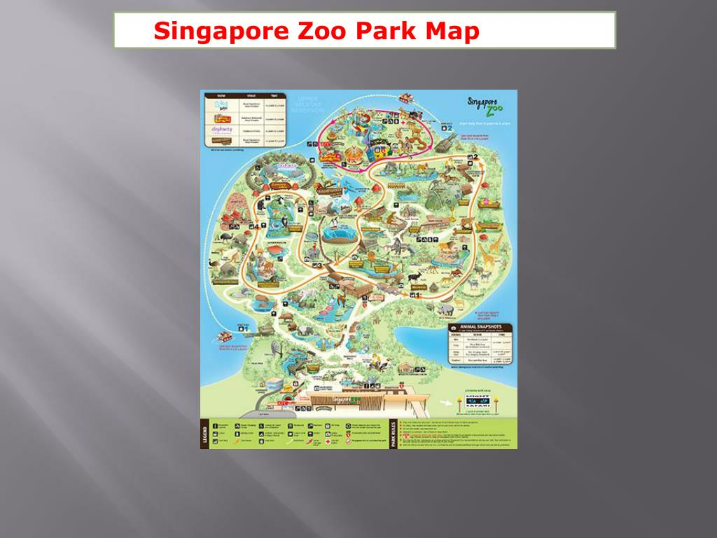 Singapore Zoo Park Map