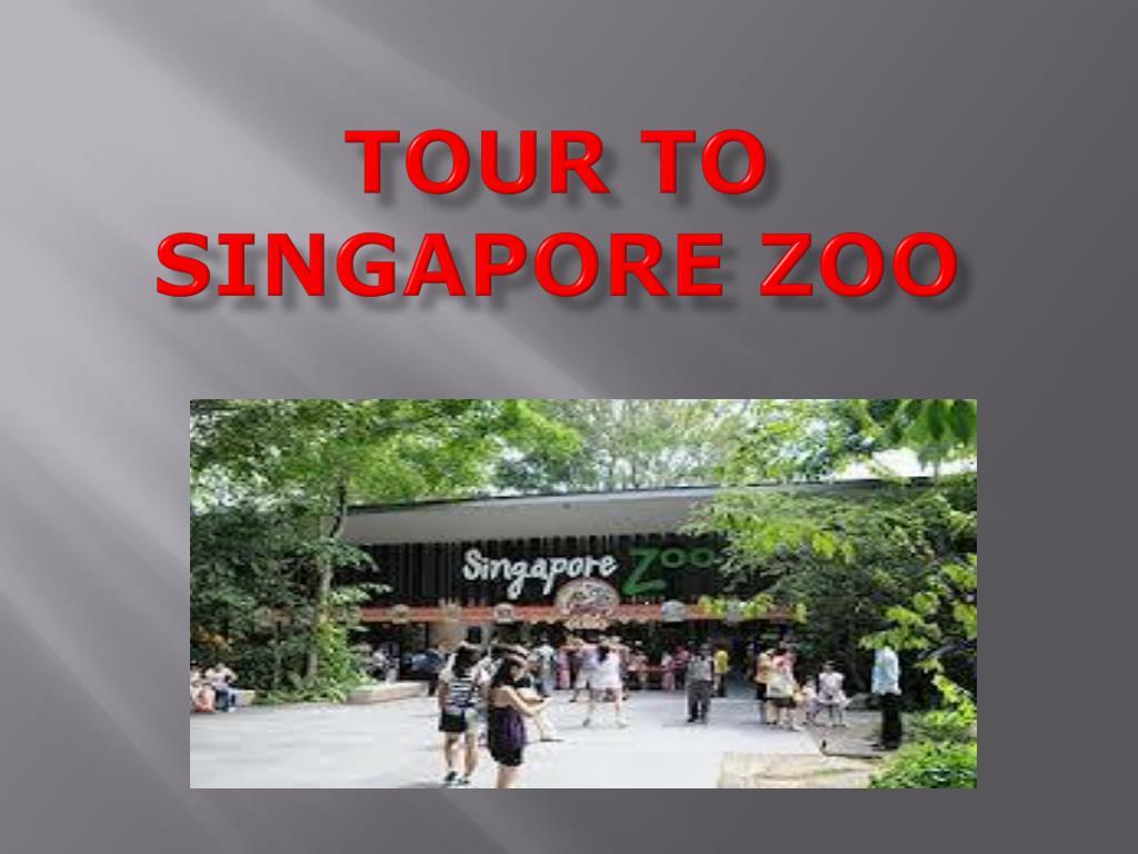 tour to singapore zoo l.