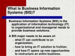 what is business information systems bis
