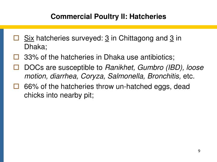 Commercial Poultry II: Hatcheries