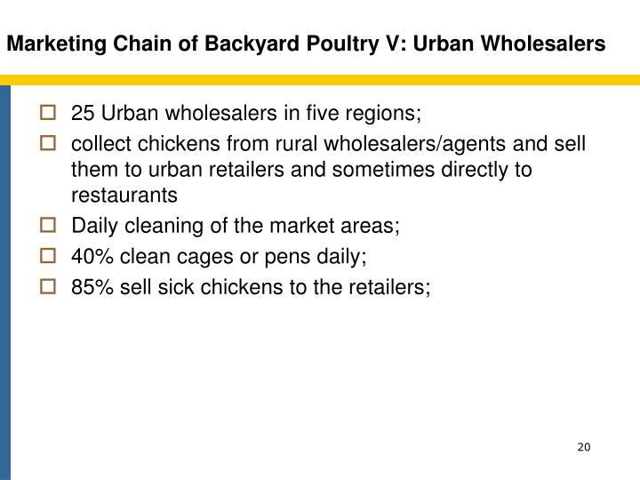Marketing Chain of Backyard Poultry V: Urban Wholesalers