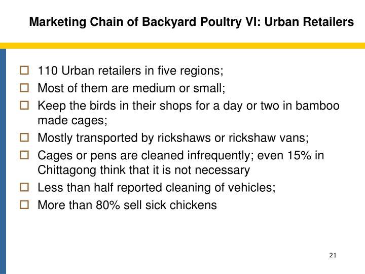 Marketing Chain of Backyard Poultry VI: Urban Retailers