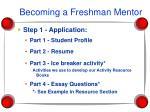 becoming a freshman mentor