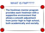 what is fmp