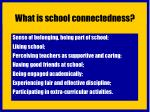what is school connectedness