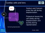 cardiac cells and ions