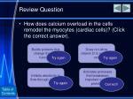review question3