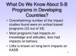 what do we know about s b programs in developing countries