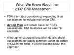 what we know about the 2007 cmi assessment