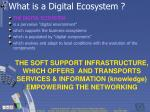 what is a digital ecosystem