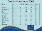 deaths in arizona 200622