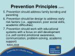 prevention principles cont